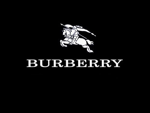http://montrealanyc.files.wordpress.com/2010/01/burberry_logo_1248218056.jpg